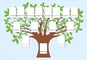 Stammbaum Vorlage » Vorlagen gratis